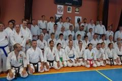 Karate Unterricht bei Großmeister Higuchi