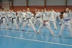 Ausbildungs-und Prüfungsprogramm in Shotokan Karatedo, Aikido, Iaido, Nihon Jujutsu und Judo.