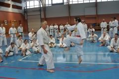 In einem besonderen Lehrkapitel widmet sich Großmeister Higuchi verschiedenen Sprungtechniken aus Kanku-dai, Kanku-Sho, Meikyo und Unsu