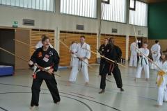 Bo-Jutsu Training unter Hans-D. Rauscher