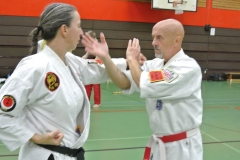 Karate-Do-Serientraining