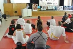 """Manfred Putzka, Aikido-Renshi 5.Dan beim Mondo zum Thema """"Gibt es das traditionelle Aikido"""""""